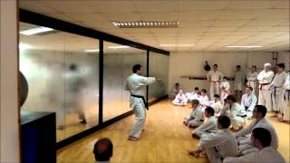 Kangeiko 2014 - Scott's Class