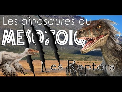 Les Raptors - Paléontologie - Les dinosaures du mésozoïque #5 - Simplex paléo