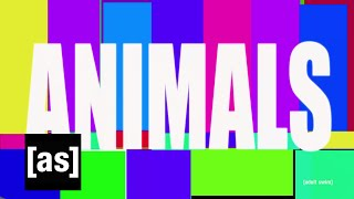Animals | Off the Air | Adult Swim