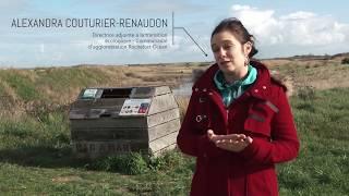 Transition écologique de Rochefort Océan : les bacs à marée