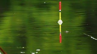 Рыбалка из детства Ловля карася на поплавочную удочку Ловля карася на мормышку