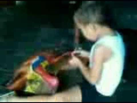 Download vidio anak ajaib.avi