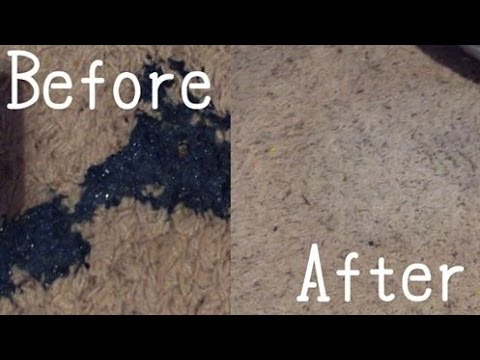 How To Get Slime Off Your Carpet//Sarah Mei
