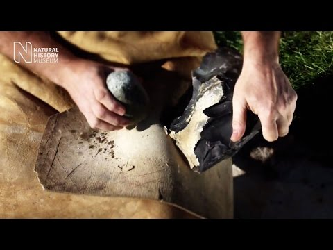Making a Neanderthal flint stone tool | Natural History Muse