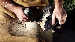 Making a Neanderthal flint stone tool | Natural History Museum