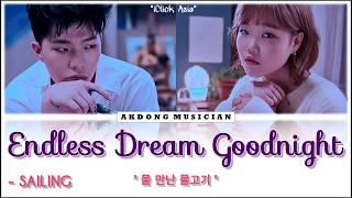 AKMU - Endless Dream Goodnight [가사 HAN/ROM/ENG]