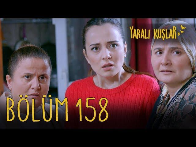 Yaralı Kuşlar > Episode 158
