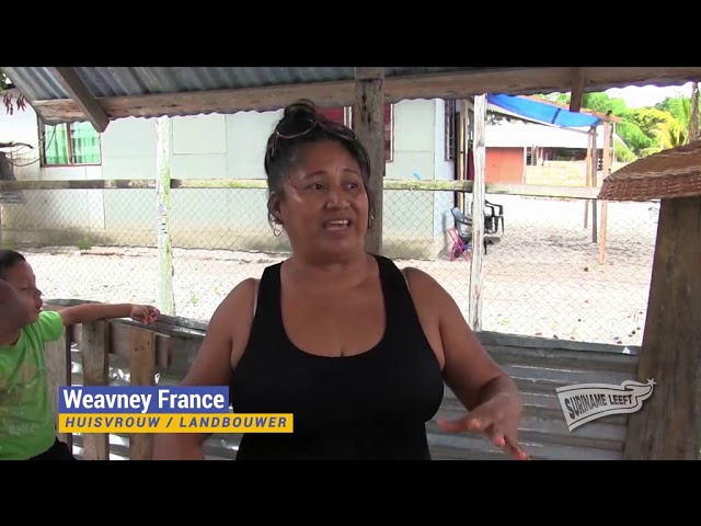 Suriname Overzee   'Suriname Leeft' afl. 3   Inheemsen in dorp Witsanti en vreemd valuta