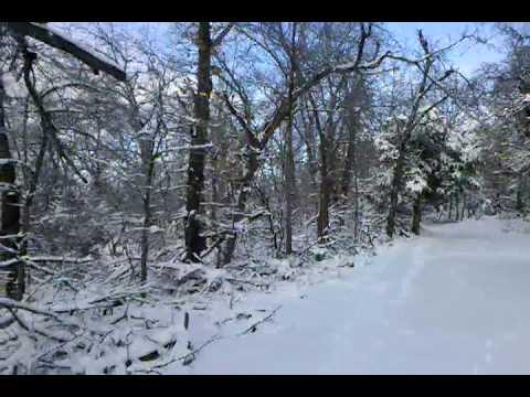 snow video-2010-01-30-15-59-20