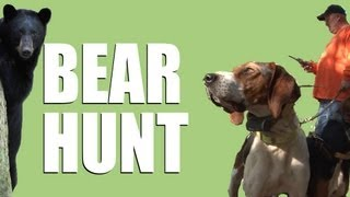 It is one of the greatest hunting hound sports in the world - and y...