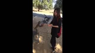 Whatsapp Funny videos 😅 Beautiful Girls Doing Stupid Thinks