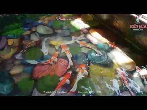 Vẽ Tranh 3D |Tranh 3d cá Koi dưới nước – Kiến Họa