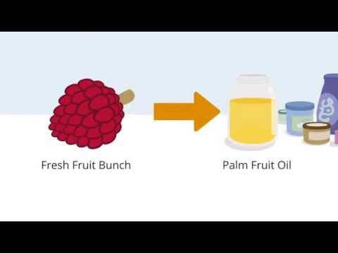 European Palm Oil Alliance (EPOA) explanimation
