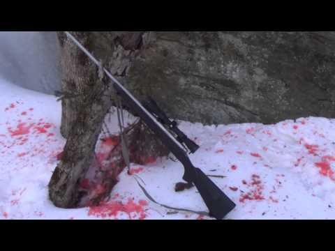 Remington 700 SPS .30-06 review