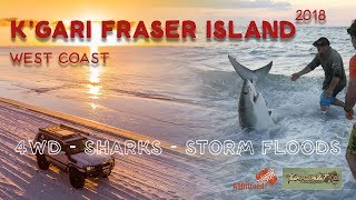 Fraser Island |  Why not to Swimm in the Ocean at Kgari! | EP 1 | ALLOFFROAD#157