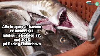 Rødvig Fiskerihavn bliver 75 år
