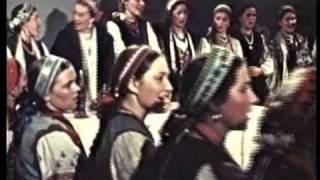 Назар Стодоля фільм