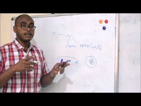 basic bacteriology / bacterial structure 1