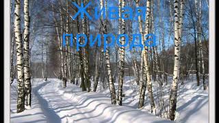 """Фильм """"В гости к зиме"""".wmv"""
