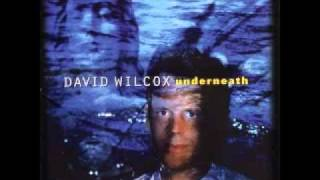 Watch David Wilcox Prisoner Of War video