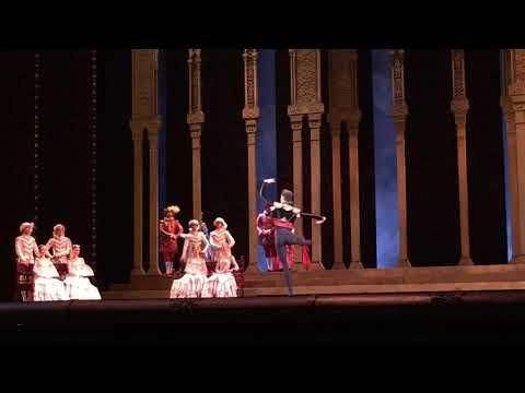 Don Quixote Act III  Basilio's Variation — David Motta Soares
