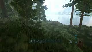 Jugando un rato ark