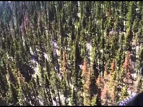 Wind Rider Zip Line Tour, Ski Apache, Ruidoso, NM