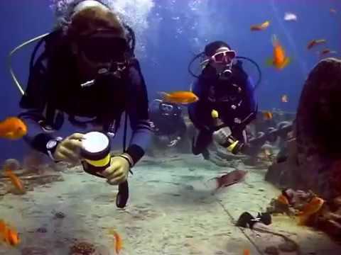 Diving The SS Thistlegorm - Sharm El Sheik