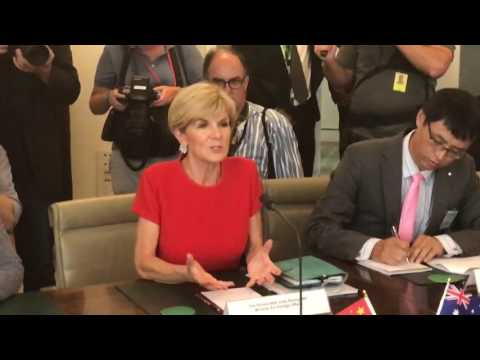 Julie Bishop addresses Chinese Foreign Minister Wang Yi