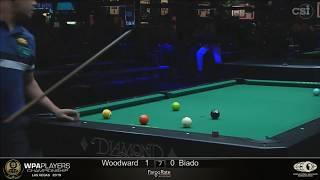 Skyler Woodward vs Carlo Biado: 2019 WPA Players Championship Main Event
