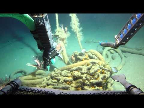 Submersible Diving Dominica - Part 1
