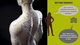 Devenir acupuncteur en vous formant en ligne. Devenez étudiant en Médecine Acupuncturale 1er année.
