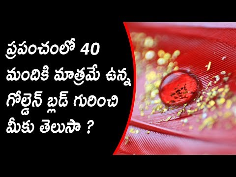 Do you know about the Golden Blood Group....Only 40 People are having in the World..!!
