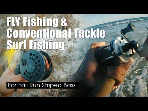 Fall Run! Surf Fly Fishing & Conventional Tackle Fishing