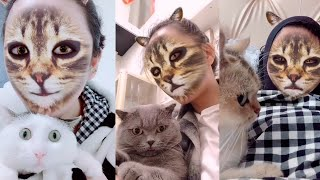 Cats' hilarious reaction when they see cat filter on owners' faces | Funny Cat Videos 2019