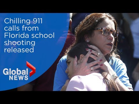 Chilling 911 calls from Florida school shooting released