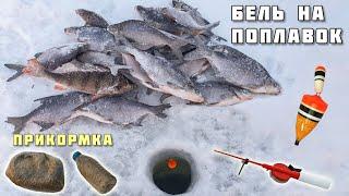ЛОВЛЯ БЕЛОЙ РЫБЫ на поплавок + прикормка для зимней рыбалки своими руками! плотва подлещик густера