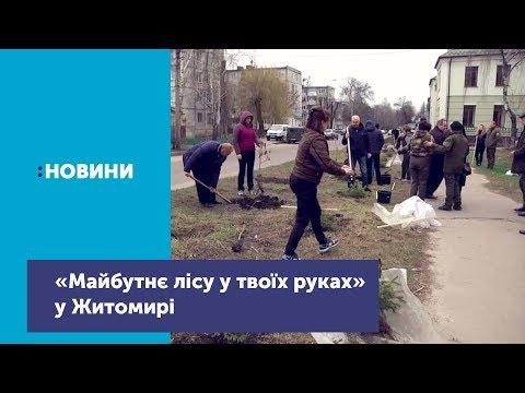 Телеканал UA: Житомир: Житомиряни долучилися до щорічної акції «Майбутнє лісу у твоїх руках»
