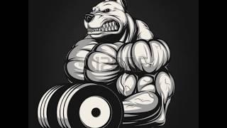 Musicas para treinar pesado - Raps marombas (Honra e gloria)