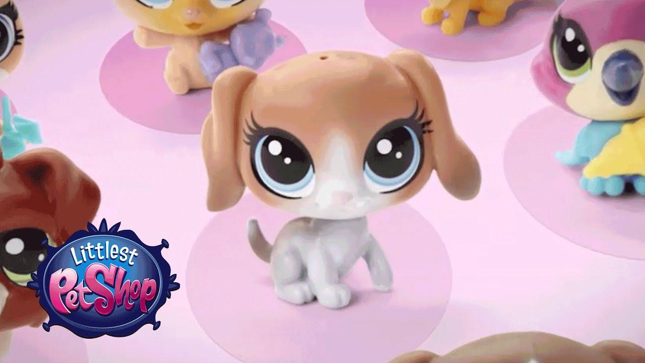 Littlest Pet Shop - 'Collectability' Official T.V. Spot