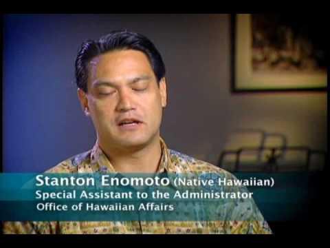 Native Hawaiian and other pacific islanders, Census 2010