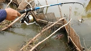 Khmer Real Life Fishing At Siem Reap Cambodia -Khmer Fishing At Siem Reap Cambodia