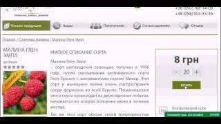 видео саженцы клубники в Украине