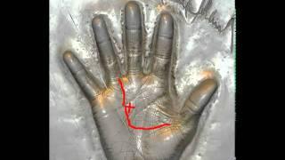 Майкл Джексон, хиромантия, анализ руки. Michael Jackson palmistry