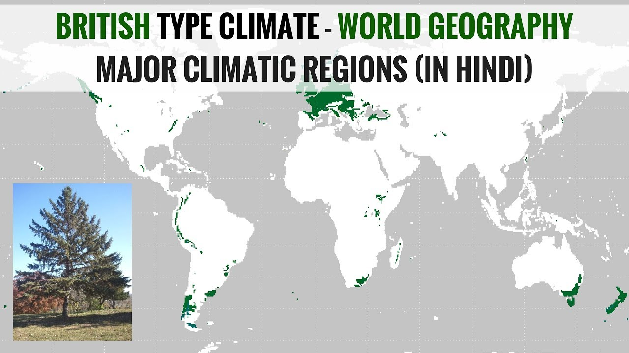 British type climate region world geography major climatic regions british type climate region world geography major climatic regions in hindi gumiabroncs Images