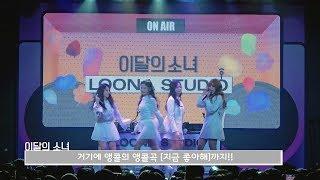 이달의소녀탐구 #449 (LOONA TV #449)