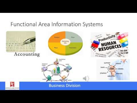 MIS: Functional applications information silos and ERP