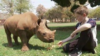شاهد: طفل في الـ 11 من العمر يتكفل بمهمة حماية صغار حيوان وحيد القرن…