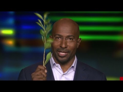 Van Jones on Adrian Peterson child abuse case