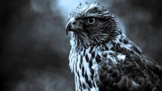 Massive attack-Superpredators (Metal postcard Remix)